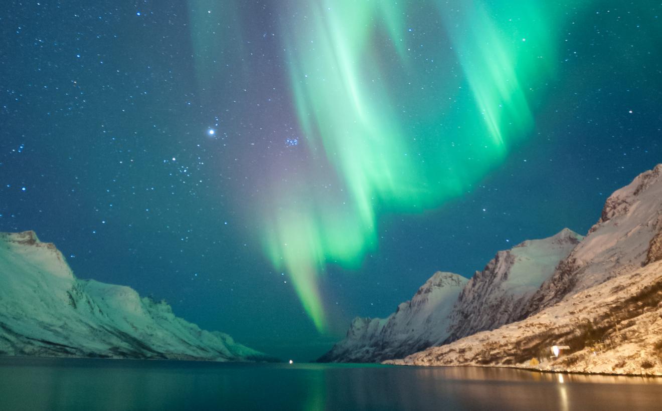 Northern Lights Albatros Travel