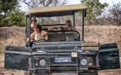 On safari in Manyeleti Game Reserve